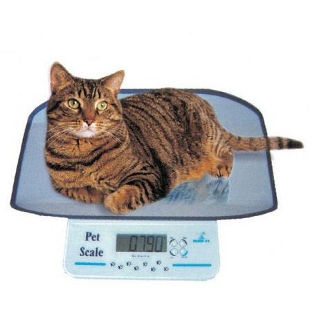 GIMA DIGITAL SMALL PET SCALE