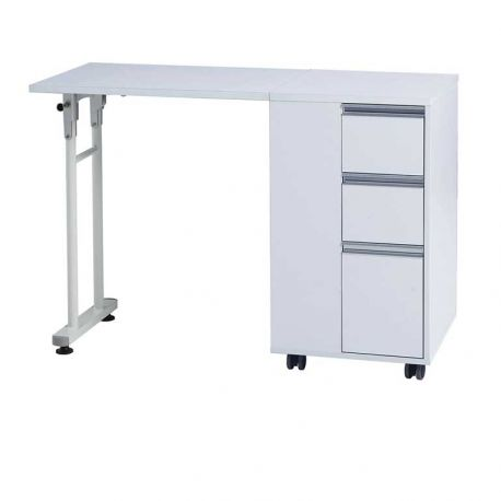 WEELKO DOUBLE MANICURE TABLE WITH EXTRACTOR FAN + BAG FOR DUST COLLECTION AND HANDREST CUSHION (DISTAL)