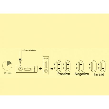 GIMA CHLAMYDIA RAPID TEST - PROFESSIONAL (BOX OF 20 PCS)